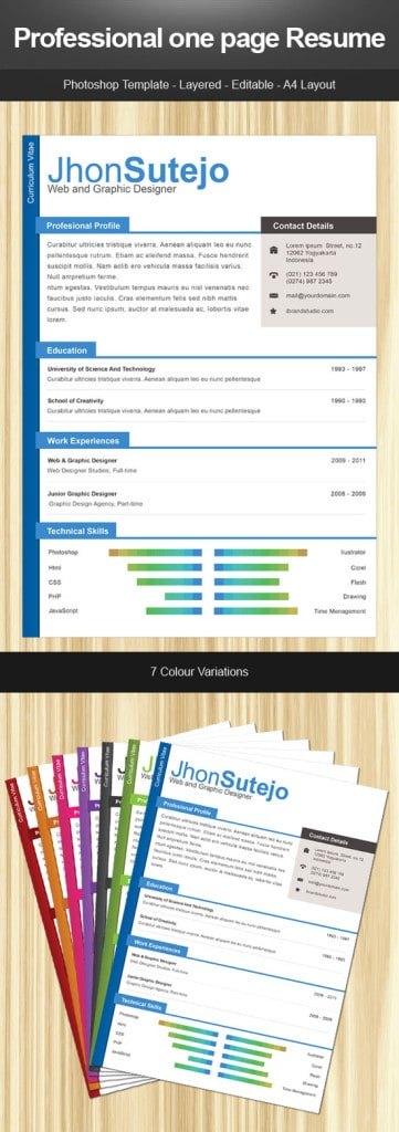 proffesional-one-page-resume-361x1024