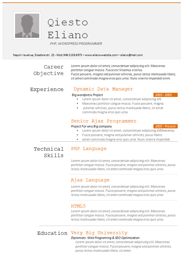 php developer resume template free samples examples format - Programmer Resume Example