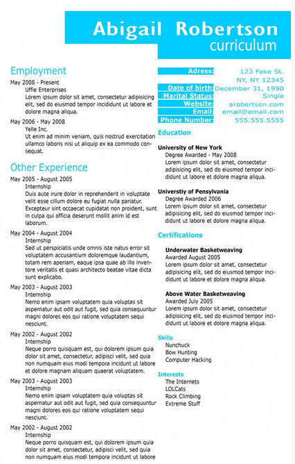 sky-blue-resume-template