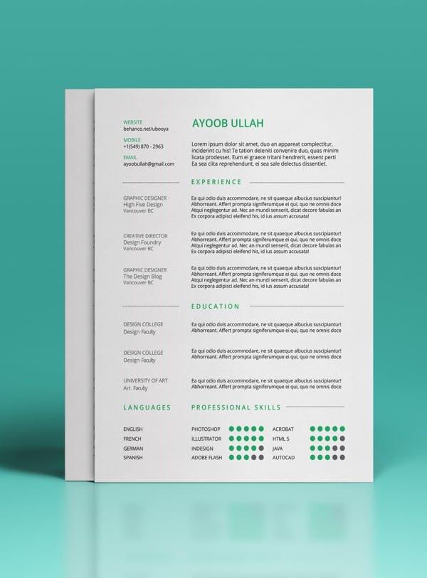 second free professional resume template example preview