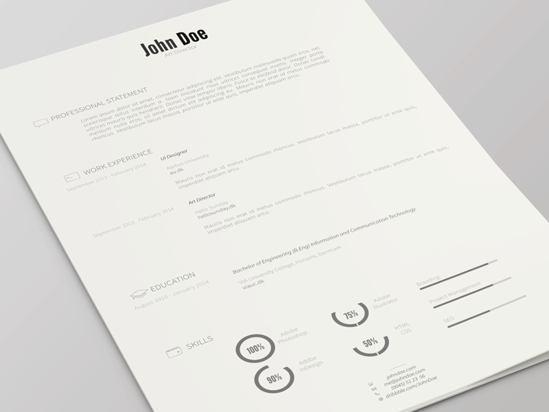professional john doe resume template